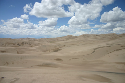 Blue cloudless sky and endless sand dunes